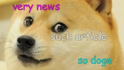 Wow So Doge