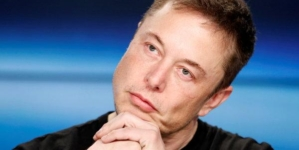 Twice As Interesting: Elon Musk Business Profile